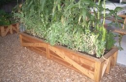COUNTRY GARDEN BOX.JPG