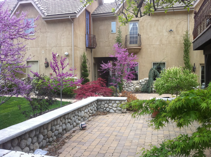 Gorgeous garden filled with flowers and beautiful trees