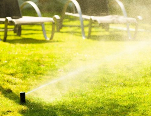 Sprinkler Systems and Your Landscapes