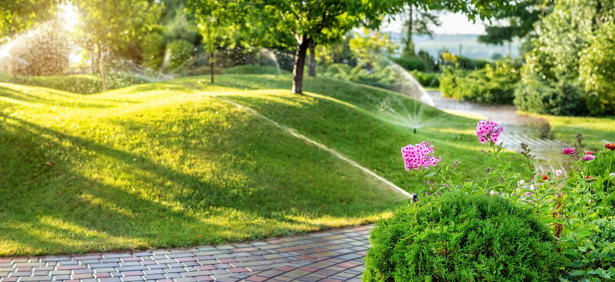 Landscape and automatic sprinkler system