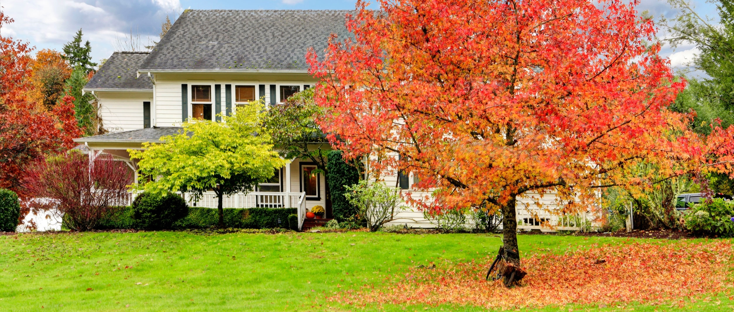Home and landscape in the fall