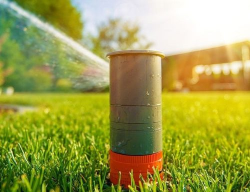 Drainage and Sprinkler Systems – The Importance!