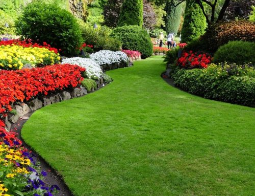 Spring Landscaping Services- 5 Important Services For Your Property