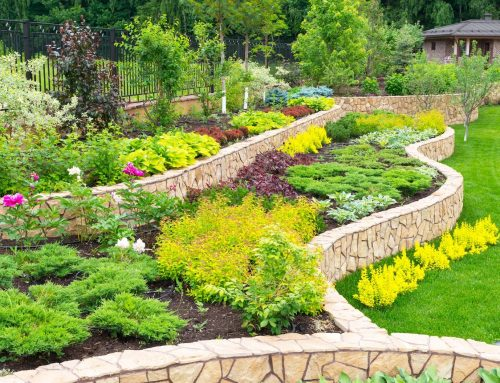 Landscape Design and Installation – When To Hire A Professional