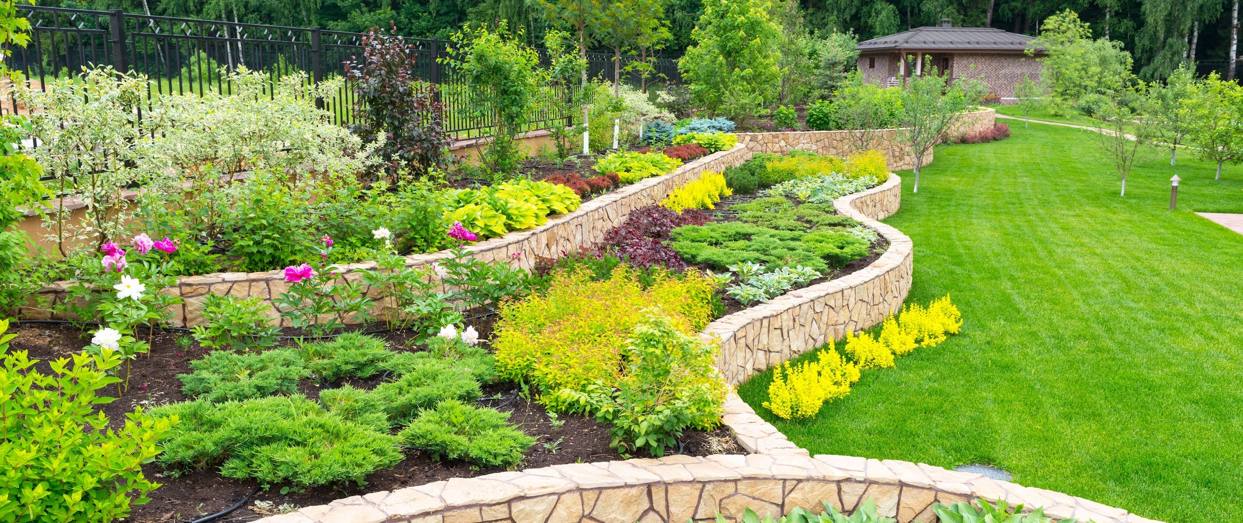 Lawn and plant beds