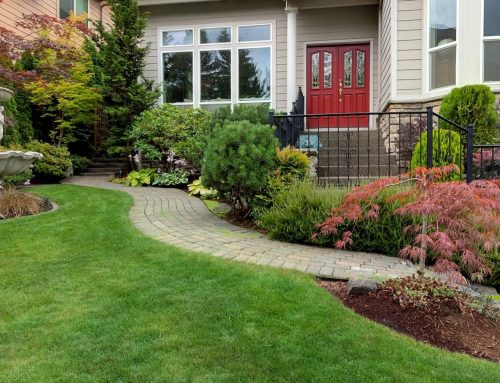 Hardscapes and Softscapes – The Perfect Duo!