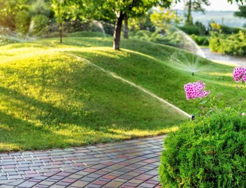 Lawn and Landscape Upkeep